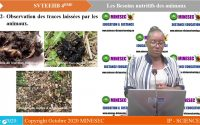 IP  SC svteehb 4eme  Leçon 2  Les besoins nutritifs des animaux