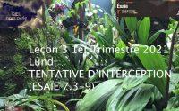 Leçon 3 : Lundi 11 Janvier 2021, Tentative d'interception (Ésaïe 7.3-9)