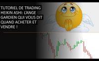 TUTORIEL Heikin ashi: Et si c'était le chaînon manquant de votre trading?