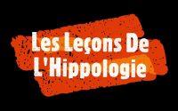 La morphologie du cheval (leçon N°2 de l'hippologie)