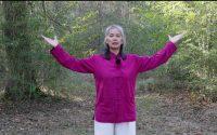 Leçon 19 Qi Gong Pacifier le Qi