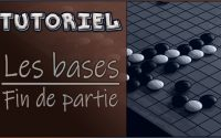 Tutoriel - Les bases du jeu de Go : FIN DE PARTIE | 3/8