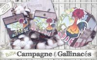 """[Tutoriel] """"Campagne & Gallinacés * 3D"""" par Coul'Heure Papier"""