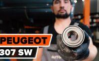 Comment remplacer un roulement de roue arrière sur PEUGEOT 307 (3H) [TUTORIEL AUTODOC]