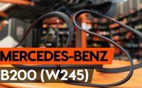 Comment remplacer une сourroie poly v sur MERCEDES-BENZ B200 (W245) [TUTORIEL AUTODOC]