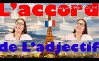 Leçon 298. La grammaire française (L'accord de l'adjectif) រៀនវេយ្យាករណ៌ភាសារបារាំងពីគុណនានិងនាម