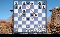 Leçon de Daniil Dubov dans une défense Tarrasch
