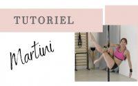 MARTINI -  Tutoriel Débutant