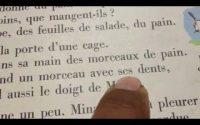 leçon 82 français تعلم اللغة الفرنسية