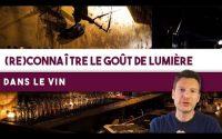 Comment retrouver le gout de LUMIÈRE dans le vin ? (Leçon n°144)