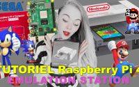 Tutoriel 👩🏼🔧 Montage du Raspberry Pi 4 8Go RAM NES Pi Case SEGA Dreamcast le plein d'émulateurs 🎲