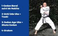 "𝑪𝒉𝒂𝒍𝒍𝒆𝒏𝒈𝒆 𝑽𝒊𝒓𝒕𝒖𝒆𝒍 𝐂𝐃𝐊𝟐𝟕   Tutoriel ""Défi'Express"" 3 #Karate"