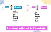 Français CP - Masculin et Féminin - leçon