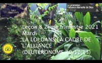 Leçon 8 : Mardi 18 Mai 2021, La loi dans le cadre de l'alliance (Deutéronome 10.12,13)