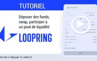 Tutoriel : Utiliser Loopring (Déposer des fonds, Swap, Fournir de la liquidité) x EvidenZ $BCDT