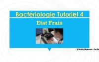 Bactériologie Tutoriel 4 / Réaliser un état frais