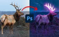 Effet de LUEUR - Tutoriel Photoshop