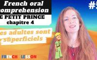 French comprehension: LE PETIT PRINCE chapitre 4, French lesson, leçon de français-The Little Prince