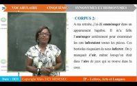 IP-LAL FRANCAIS 5ème VOCABULAIRE Leçon 7 SYNONYMES ET HOMONYMES