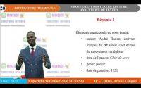 IP-LAL Français (Litterature) Tle Leçon 9 Groupement de textes Lecture analytique texte 1