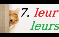 LEUR / LEURS: Cours de français gratuit pour débutants. Leçon 7