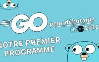 [1/??] Notre premier programme | Tutoriel Français Golang pour débutants 2021