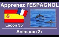 Apprenez l'ESPAGNOL - Leçon 35 - Animaux [2] 🦈🐢 -- Aprende ESPAÑOL - Lección 35 - Animales [2]