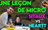 Sitaux vs Heartt | Une leçon de micro