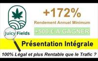 Juicy Fields Présentation Avis et Tutoriel | Revenu Passif 2021 dans l'Economie Réelle