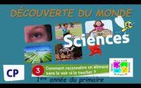 Activité scientifique CP (Découverte du monde) 1ère année primaire Unité 1 Leçon 3